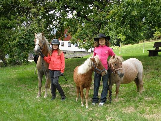 Koně s dětmi u penzionu