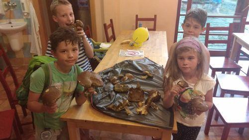 Program pro děti - hub roste dost:-)