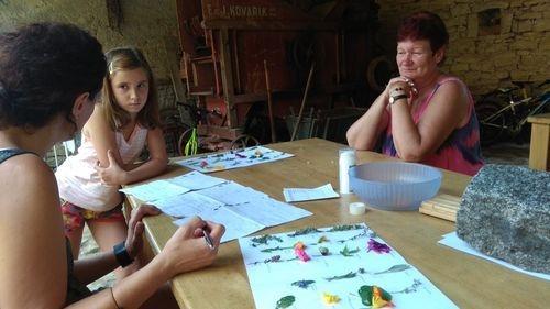 Program pro děti - bylinky